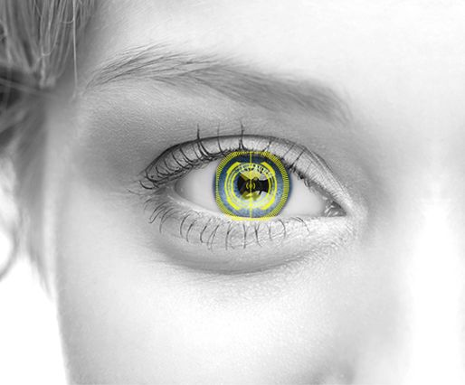 Iris recognition vs retina scanning