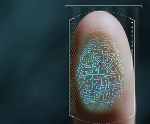 The rise of biometry